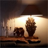 Lamp driftwood_