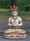 Brahma rood_