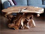 Salontafel Roots_