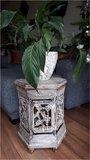 Planten/bijzettafel Ubud_