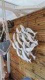 Wandpaneel visjes (wit)_