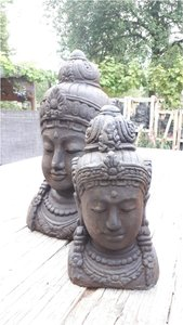 Borstbeeld Shiva S